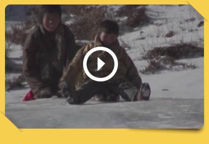 [录像故事] 牛粪──被丢弃的珍宝