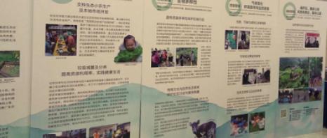 社区伙伴成立北京代表处 与政府部门良好互动